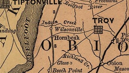 Hornbeak